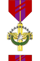 Meritorious Expeditionary Team Medal